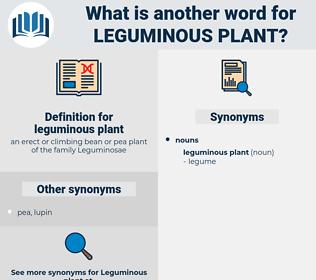 leguminous plant, synonym leguminous plant, another word for leguminous plant, words like leguminous plant, thesaurus leguminous plant