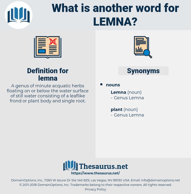 lemna, synonym lemna, another word for lemna, words like lemna, thesaurus lemna