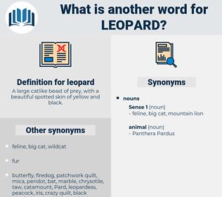 leopard, synonym leopard, another word for leopard, words like leopard, thesaurus leopard