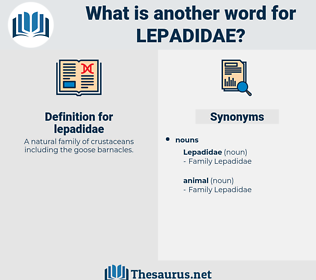 lepadidae, synonym lepadidae, another word for lepadidae, words like lepadidae, thesaurus lepadidae