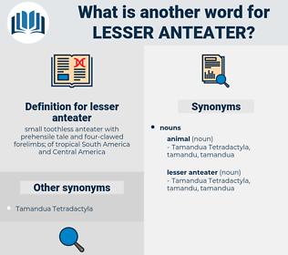 lesser anteater, synonym lesser anteater, another word for lesser anteater, words like lesser anteater, thesaurus lesser anteater