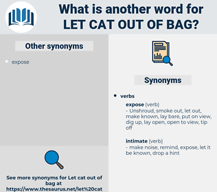 let cat out of bag, synonym let cat out of bag, another word for let cat out of bag, words like let cat out of bag, thesaurus let cat out of bag