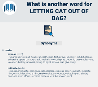 letting cat out of bag, synonym letting cat out of bag, another word for letting cat out of bag, words like letting cat out of bag, thesaurus letting cat out of bag