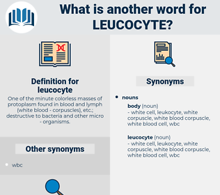 leucocyte, synonym leucocyte, another word for leucocyte, words like leucocyte, thesaurus leucocyte