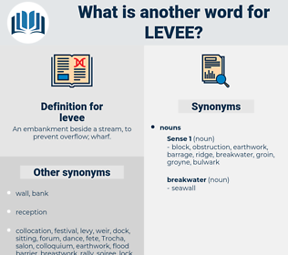 levee, synonym levee, another word for levee, words like levee, thesaurus levee
