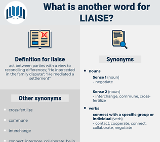 liaise, synonym liaise, another word for liaise, words like liaise, thesaurus liaise