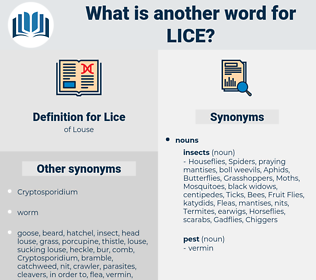 Lice, synonym Lice, another word for Lice, words like Lice, thesaurus Lice