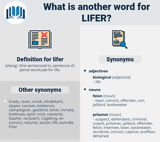 lifer, synonym lifer, another word for lifer, words like lifer, thesaurus lifer