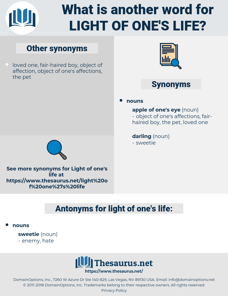 light of one's life, synonym light of one's life, another word for light of one's life, words like light of one's life, thesaurus light of one's life