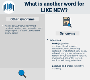 like new, synonym like new, another word for like new, words like like new, thesaurus like new