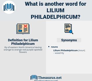 Lilium Philadelphicum, synonym Lilium Philadelphicum, another word for Lilium Philadelphicum, words like Lilium Philadelphicum, thesaurus Lilium Philadelphicum