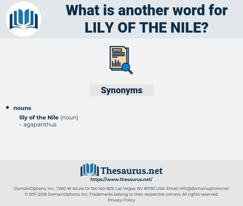 Lily Of The nile, synonym Lily Of The nile, another word for Lily Of The nile, words like Lily Of The nile, thesaurus Lily Of The nile