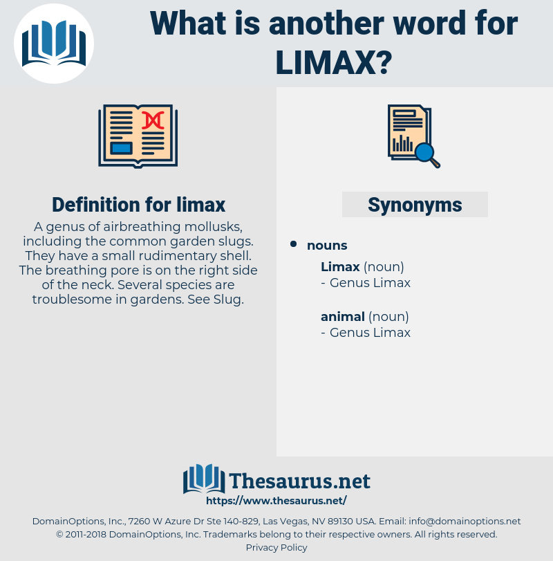 limax, synonym limax, another word for limax, words like limax, thesaurus limax