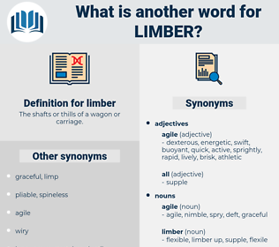 limber, synonym limber, another word for limber, words like limber, thesaurus limber