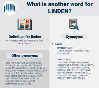 linden, synonym linden, another word for linden, words like linden, thesaurus linden