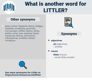 littler, synonym littler, another word for littler, words like littler, thesaurus littler