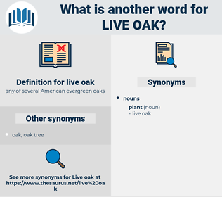 live oak, synonym live oak, another word for live oak, words like live oak, thesaurus live oak