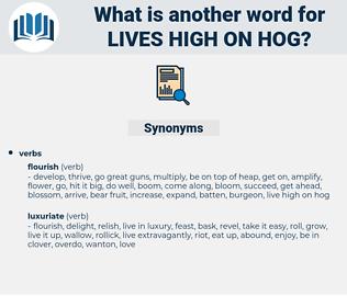 lives high on hog, synonym lives high on hog, another word for lives high on hog, words like lives high on hog, thesaurus lives high on hog