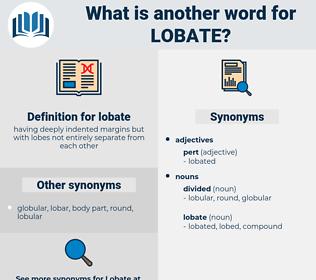 lobate, synonym lobate, another word for lobate, words like lobate, thesaurus lobate