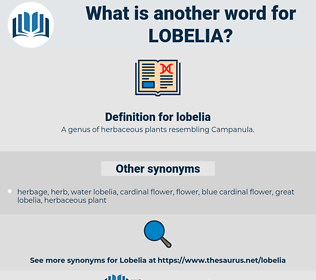 lobelia, synonym lobelia, another word for lobelia, words like lobelia, thesaurus lobelia