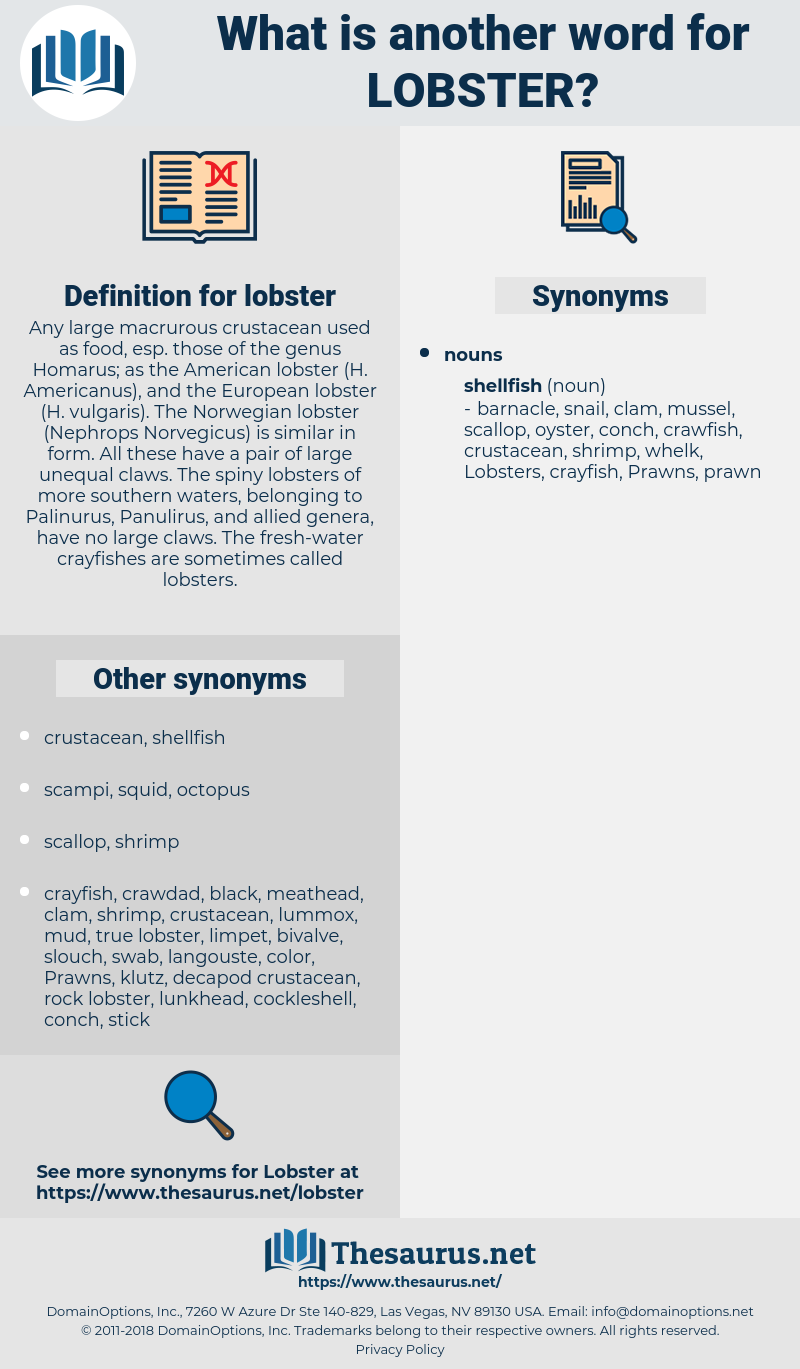 Synonyms for LOBSTER - Thesaurus net