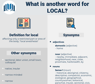 local, synonym local, another word for local, words like local, thesaurus local
