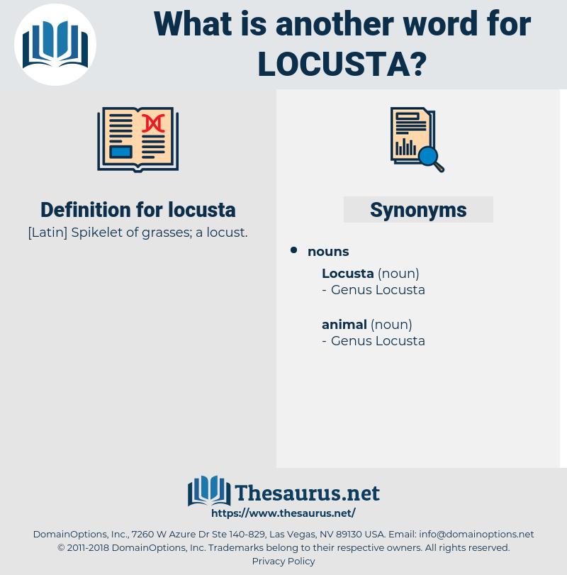 locusta, synonym locusta, another word for locusta, words like locusta, thesaurus locusta