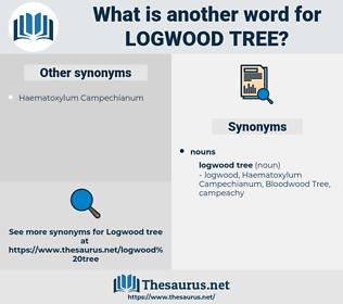 logwood tree, synonym logwood tree, another word for logwood tree, words like logwood tree, thesaurus logwood tree