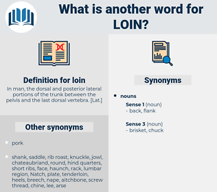 loin, synonym loin, another word for loin, words like loin, thesaurus loin