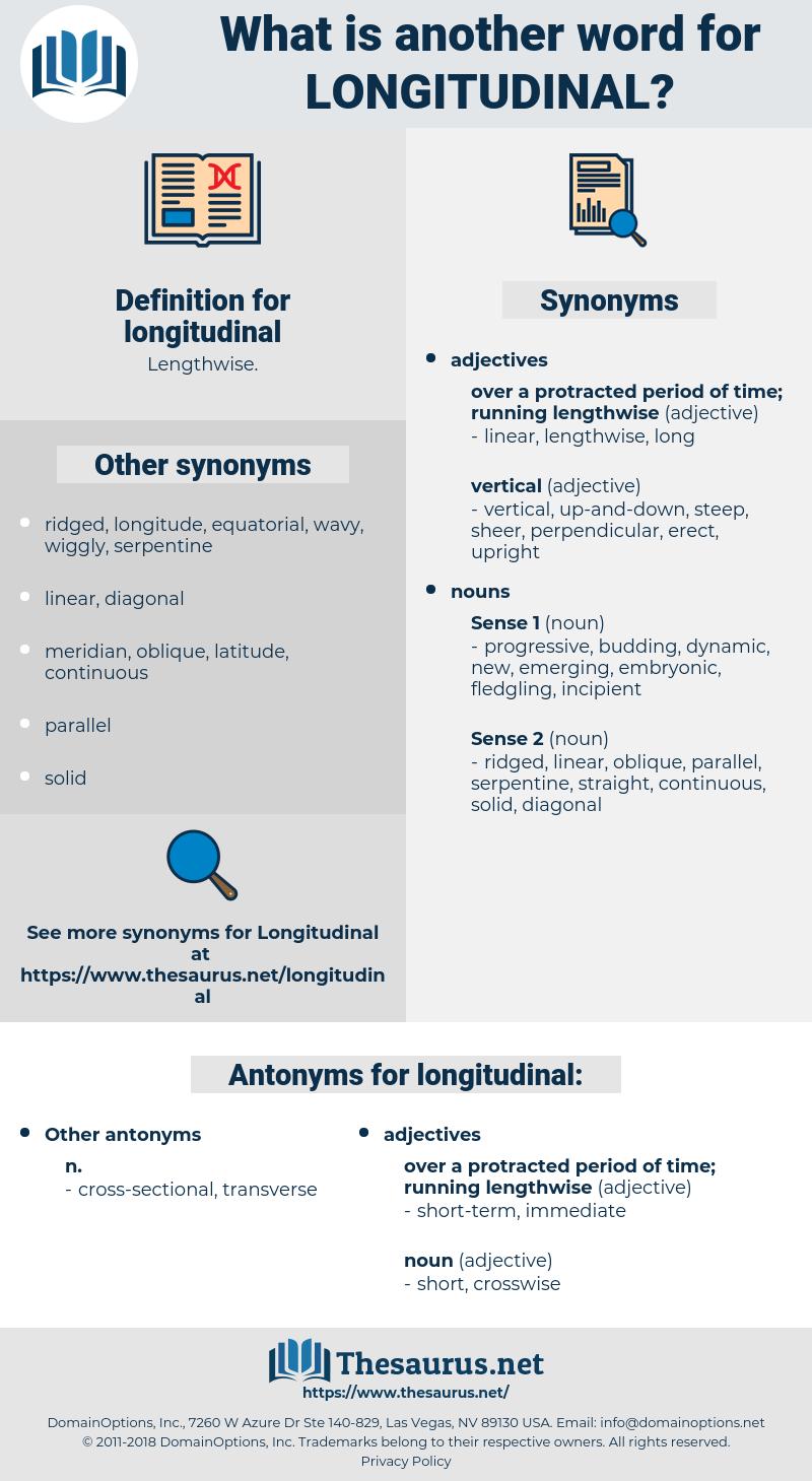 longitudinal, synonym longitudinal, another word for longitudinal, words like longitudinal, thesaurus longitudinal