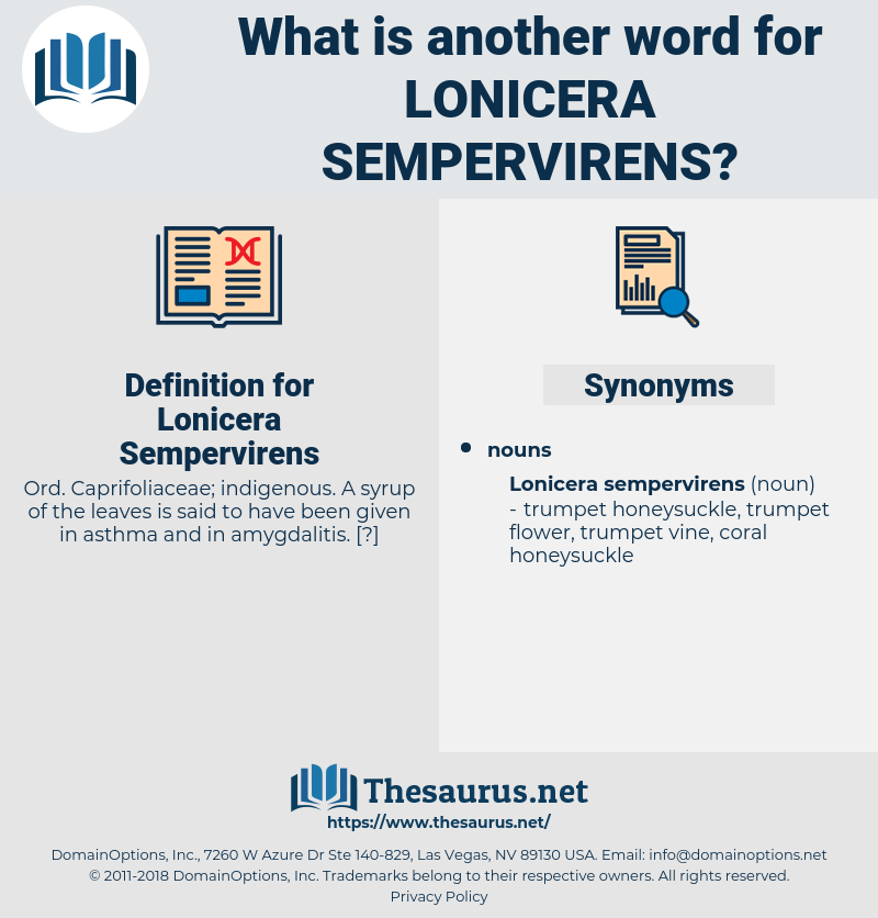 Lonicera Sempervirens, synonym Lonicera Sempervirens, another word for Lonicera Sempervirens, words like Lonicera Sempervirens, thesaurus Lonicera Sempervirens