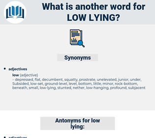 low-lying, synonym low-lying, another word for low-lying, words like low-lying, thesaurus low-lying