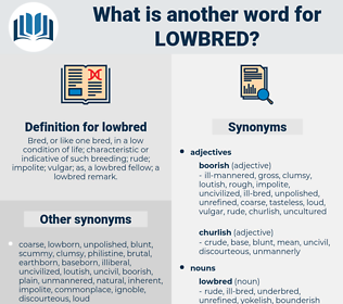 lowbred, synonym lowbred, another word for lowbred, words like lowbred, thesaurus lowbred