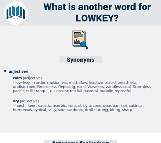 lowkey, synonym lowkey, another word for lowkey, words like lowkey, thesaurus lowkey