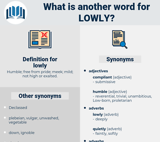lowly, synonym lowly, another word for lowly, words like lowly, thesaurus lowly