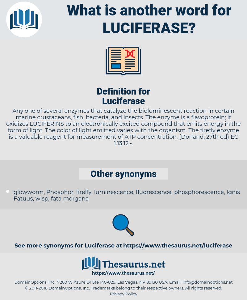Luciferase, synonym Luciferase, another word for Luciferase, words like Luciferase, thesaurus Luciferase