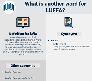 luffa, synonym luffa, another word for luffa, words like luffa, thesaurus luffa