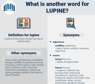 lupine, synonym lupine, another word for lupine, words like lupine, thesaurus lupine