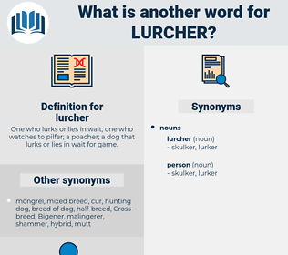 lurcher, synonym lurcher, another word for lurcher, words like lurcher, thesaurus lurcher