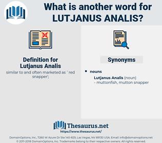 Lutjanus Analis, synonym Lutjanus Analis, another word for Lutjanus Analis, words like Lutjanus Analis, thesaurus Lutjanus Analis