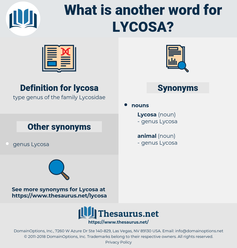 lycosa, synonym lycosa, another word for lycosa, words like lycosa, thesaurus lycosa