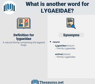 lygaeidae, synonym lygaeidae, another word for lygaeidae, words like lygaeidae, thesaurus lygaeidae