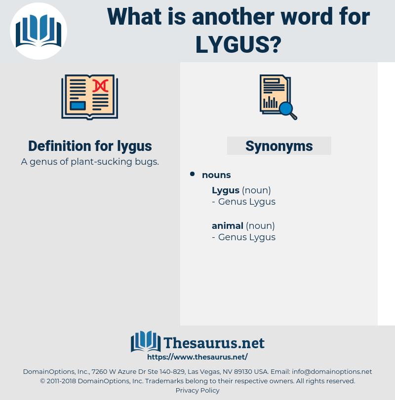 lygus, synonym lygus, another word for lygus, words like lygus, thesaurus lygus