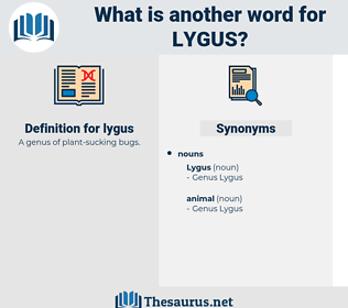 lygus, synonym lygus, another word for lygus, words like lygus, thesaurus lygus