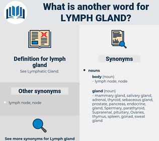lymph gland, synonym lymph gland, another word for lymph gland, words like lymph gland, thesaurus lymph gland