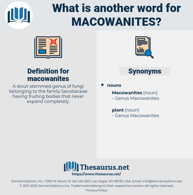macowanites, synonym macowanites, another word for macowanites, words like macowanites, thesaurus macowanites