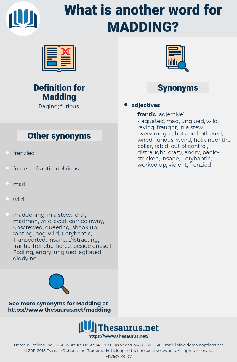 Synonyms for MADDING - Thesaurus net