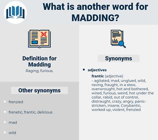 Madding, synonym Madding, another word for Madding, words like Madding, thesaurus Madding