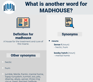 madhouse, synonym madhouse, another word for madhouse, words like madhouse, thesaurus madhouse