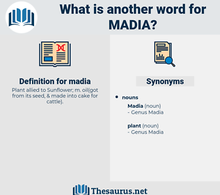madia, synonym madia, another word for madia, words like madia, thesaurus madia